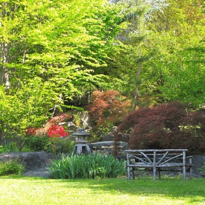 Il giardino giapponese