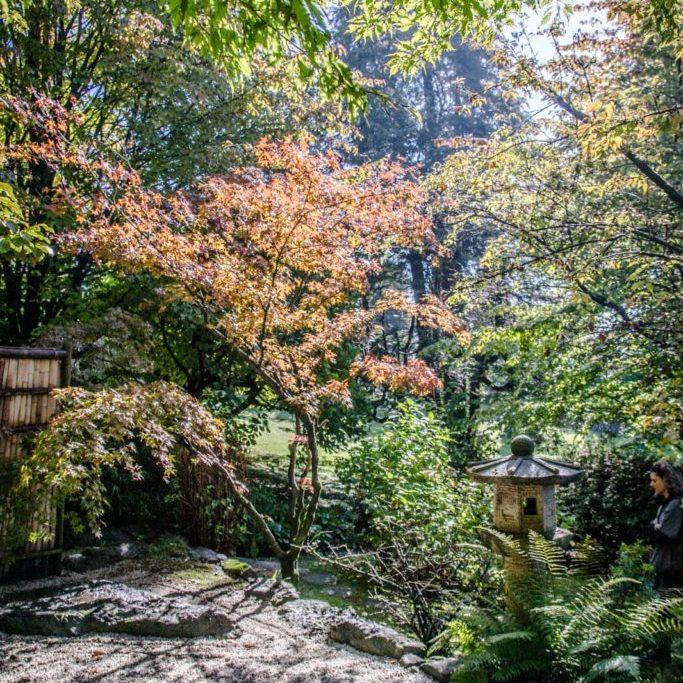 Giardino Giapponese3