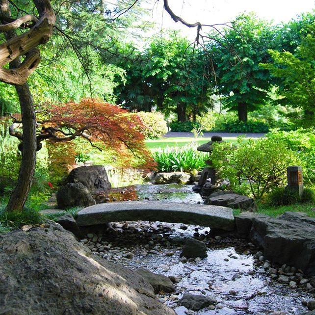 il giardino giapponese12