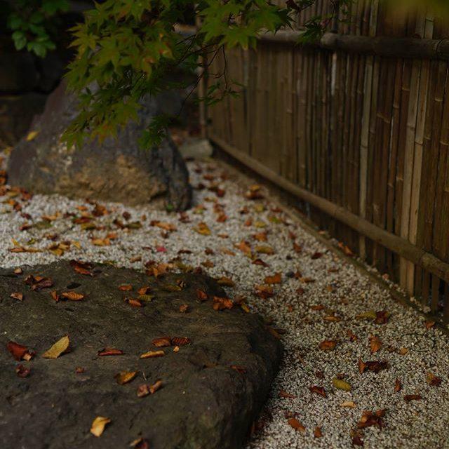 il giardino giapponese3