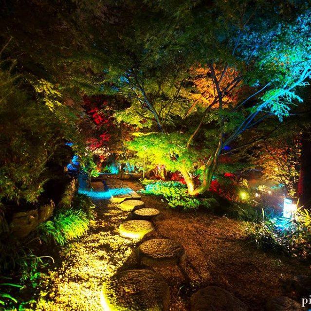 il giardino giapponese9